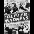 32 marijuana