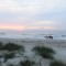 beaches Amelia island