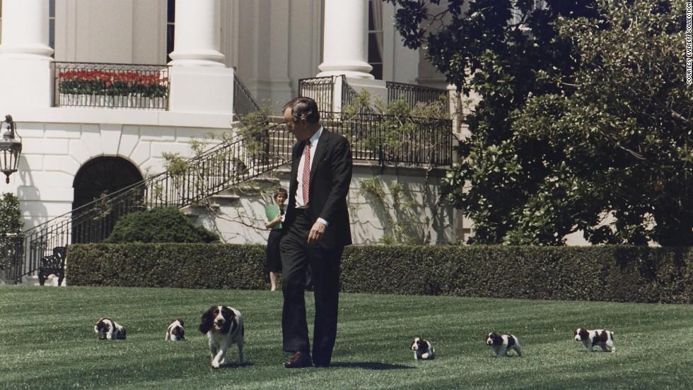 John Carter S Dog