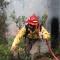 04 Yosemite Rim Fire 0823