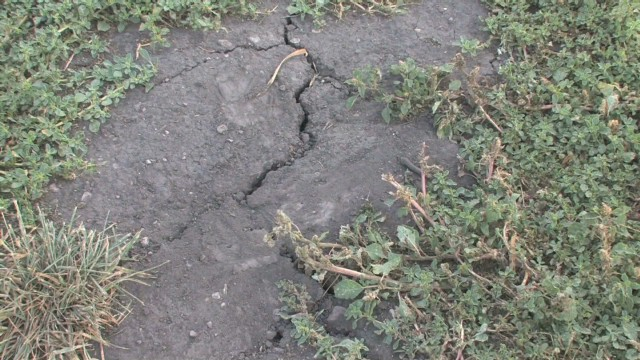 Drought, extreme heat hurting crops