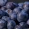 blueberries memory upwave