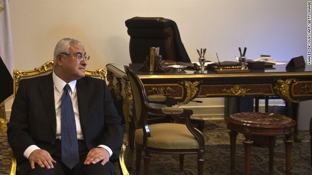 Egypt's interim president Adly Mansour looks on as he meets with US Deputy Secretary of State in Cairo on July 15, 2013.