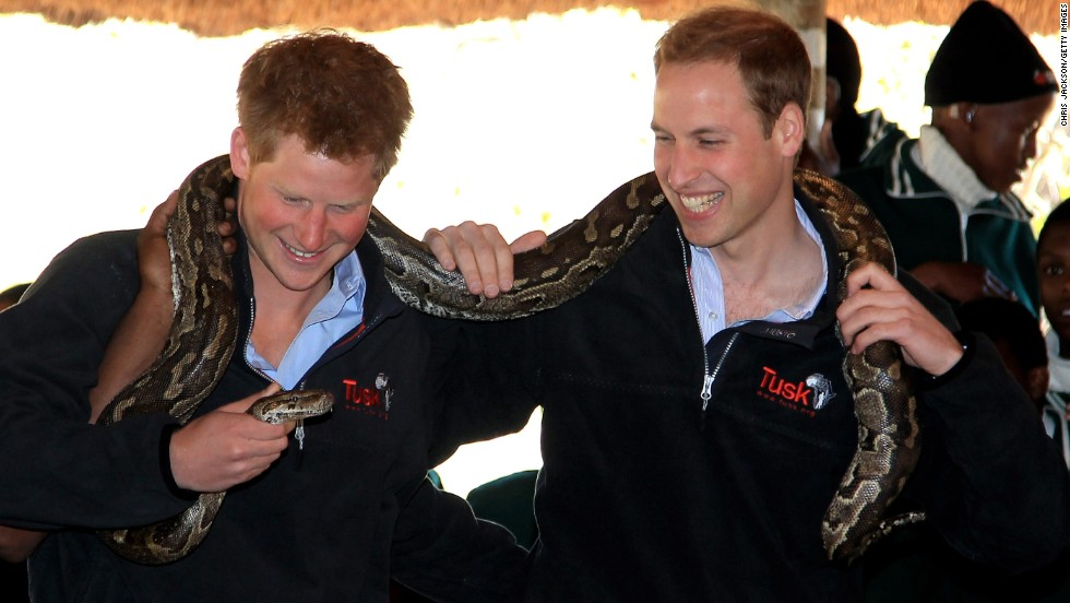 Prince Harry, left, and Prince William hold an African rock python during a visit to Mokolodi Education Centre in Gaborone, Botswana, on June 15, 2010.