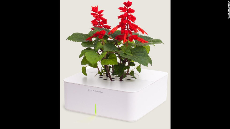 "<a href=""http://www.clickandgrow.com/"" target=""_blank"">Click and Grow</a> lets you grow herbs and flowers indoors using a smart soil and watering technology."