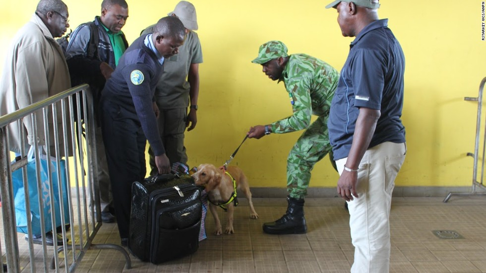 Cooper searching passengers' bags at Libreville's train station.