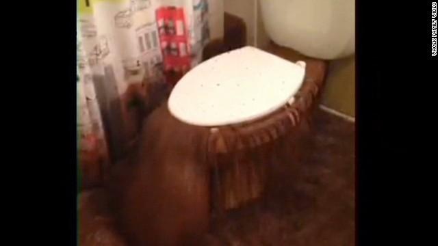 dnt valencia boulder family toilet backup newday_00003517.jpg