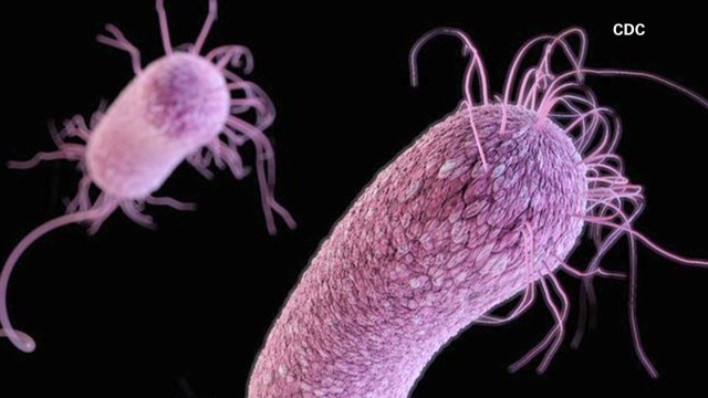 'Superbugs' a growing threat