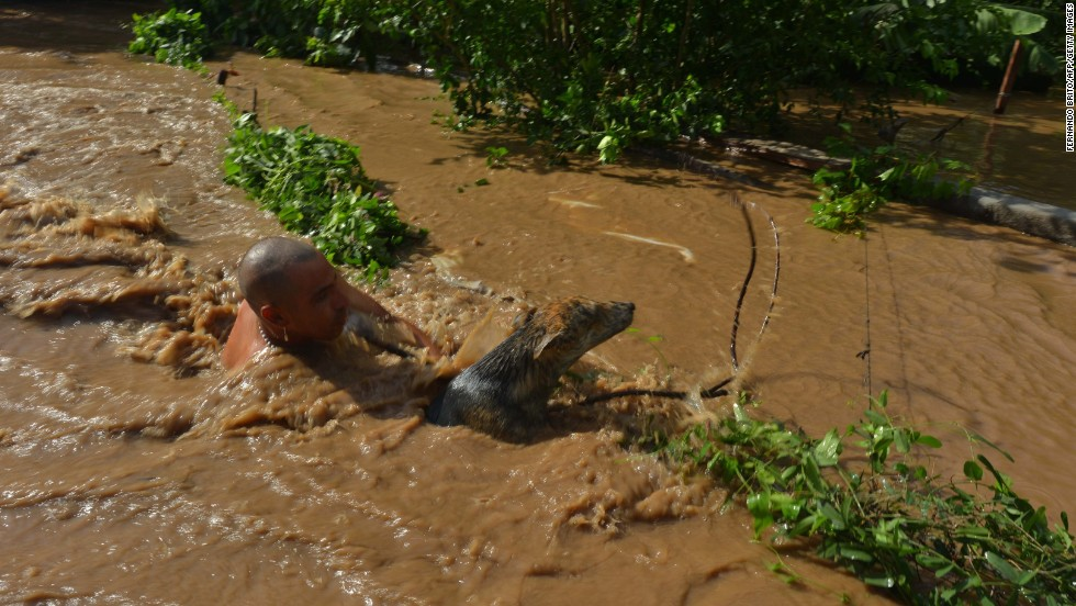 A man rescues his dog from floodwater in Navolato, Sinaloa State, Mexico, on September 20.