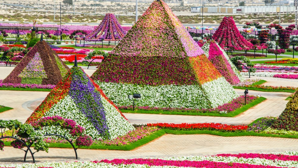 The Dubai Miracle Garden. That sums it up, really.