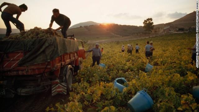 A couple of millennia after Caesar, Sicilian wine is praiseworthy again.