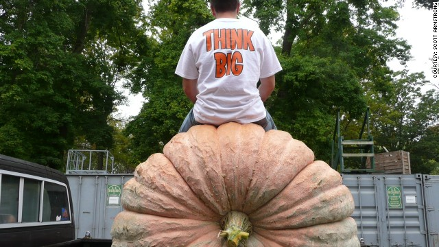 For five months, Scott Armstrong tended to the pumpkin in his backyard. His prize: $500, a plaque, a blue ribbon, and a trophy.