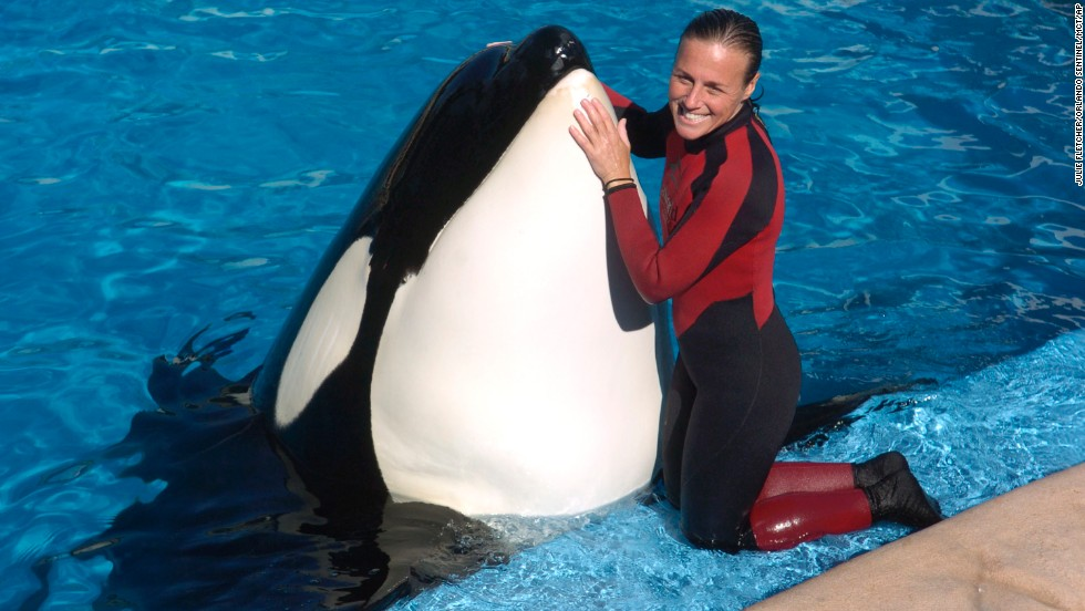 The nation's attention turned once again to the plight of captive orcas in February 2010 when SeaWorld trainer Dawn Brancheau was killed by a male killer whale, Tilikum.  Tilikum had been involved in the deaths of two other humans prior to the incident, including a trainer in 1991 in Canada and a man who slipped into the orca tank at SeaWorld Orlando in 1999.