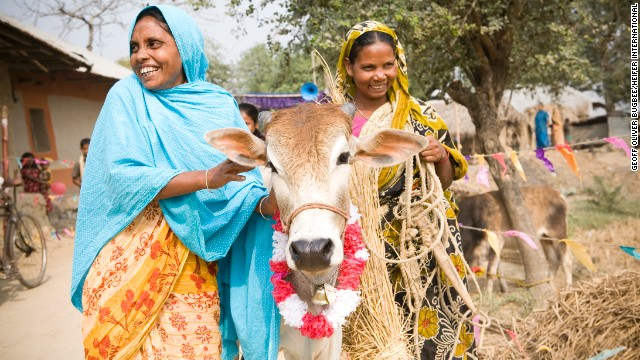 Sabina Begam (left) passes on the gift of a heifer to Malati Hassada in Holdibona, Bhashopada, Bangladesh