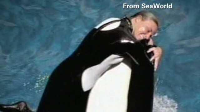 """Blackfish"" documentary"