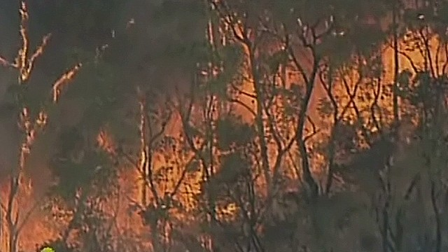 vos australia bushfire aerials_00000409.jpg