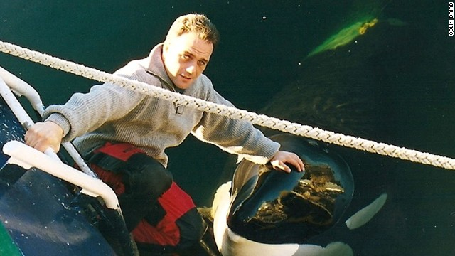 Trainer worked with Tilikum, Keiko