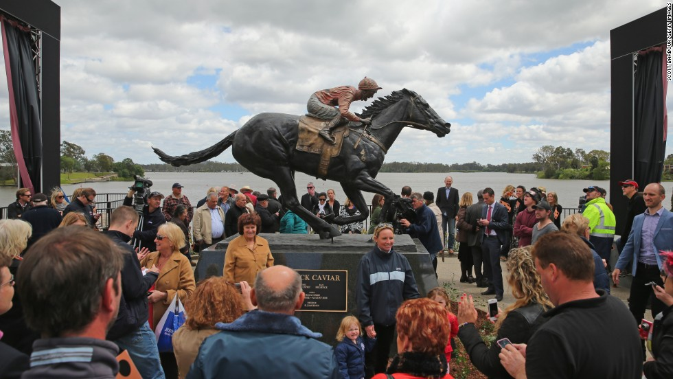 Black Caviar's exploits on the racetrack earned it a legion of loyal fans in Australia, many of whom turned up for the unveiling.