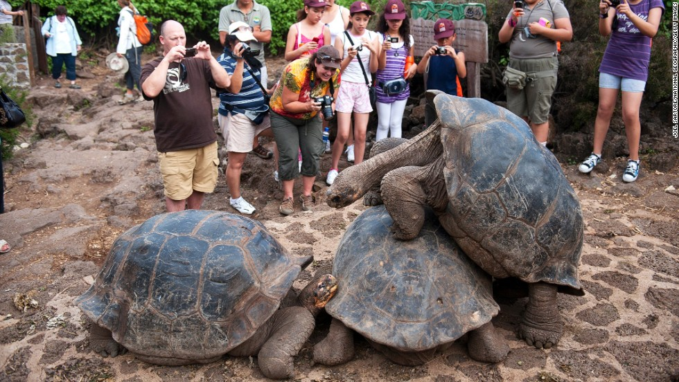 While independent travel is great, many places in the world can't be accessed by solo travelers due to license and government restrictions. Many big destinations, such the Galapagos (pictured) and Antarctica, need to be explored as part of organized trips.