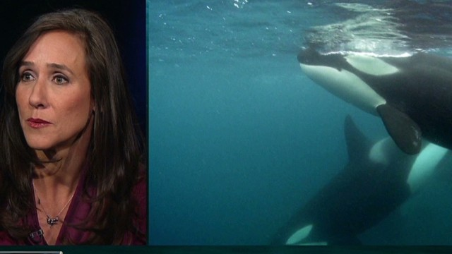 Cowperthwaite on her film 'Blackfish'