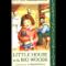 16 fav books little house