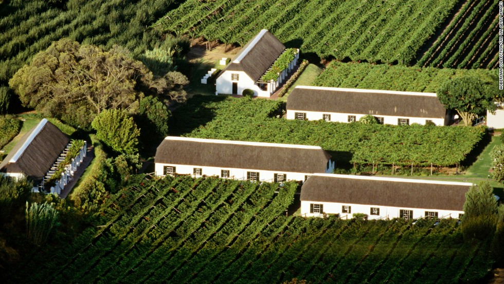 Cape Wine route, shows lush vineyards in Paarl, Western Cape, South Africa.