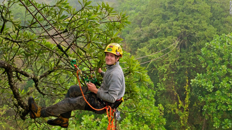 "Launched by David Wiles (pictured), the ""Explore: The Ancient Trees of Africa"" project is aiming to help highlight the need to preserve South Africa's spectacular trees."