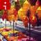 irpt diwali rangoli lanterns