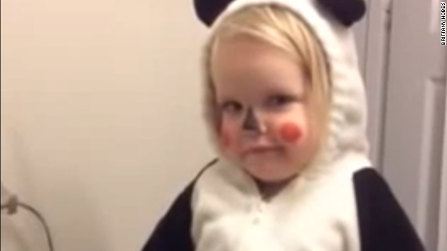 Little panda is shocked by her own cuteness