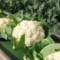 07 veggies 1106