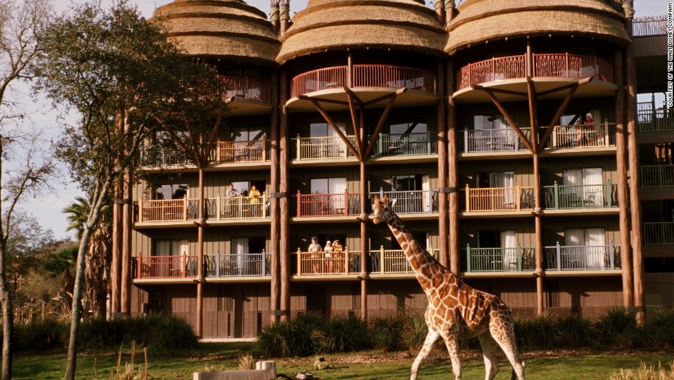 7. Disney's Animal Kingdom at Walt Disney World in Florida offers hotel views of animals wandering by.