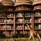 family hotels disney- animal kingdom