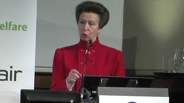 sot princess anne horsemeat welfare_00001912.jpg