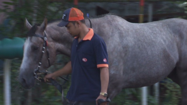 spc winning post affordable racing singapore_00001111.jpg