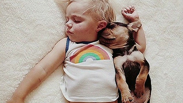 Napping boy and pup photos go viral