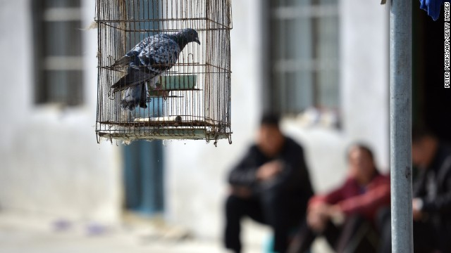 The Chinese economy has been likened to a bird and the Chinese political system to a bird cage: While the cage may be enlarged to let the bird fly more freely, it must never be discarded.