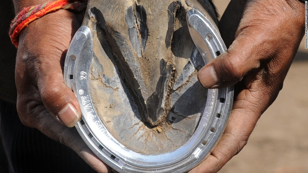 In this photo taken last year, a farrier fits a traditional aluminum horseshoe ahead of a race in India.