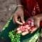 Microfinance entrepreneurs
