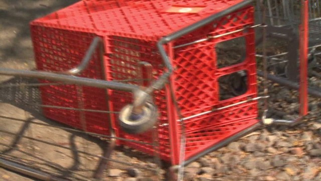Sledgehammer used to thwart cart thieves