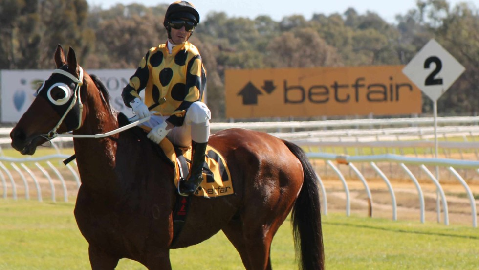 In a bid to stop the rot towards the end of his career, he was paired with two-time Melbourne Cup-winning jockey Glen Boss in a bid to buck that trend.