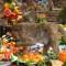 05 Lopburi monkey buffet