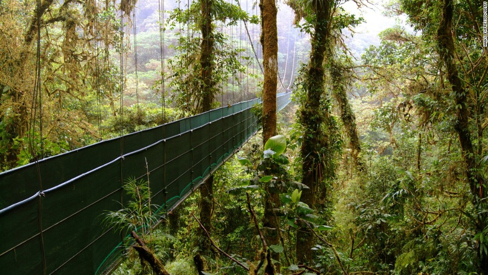 A visit to the Monteverde Cloud Forest Reserve is part of a New Year's holiday tour to Costa Rica, where you can explore the beauty of this lovely country.