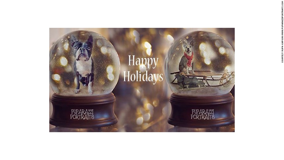 "Kapoor created digital images of people's pets in snow globes last year in order to raise money for the Alabama Boston Terrier Rescue group. Via her <a href=""https://www.facebook.com/PuparazziPortraits"" target=""_blank"">Facebook page</a>, she raised more than $300 for the organization last year. She will be creating the snow globe images again this year."