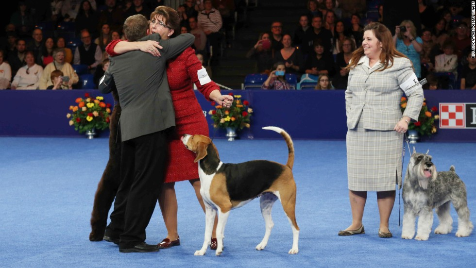 Jewel's handler, Lisa Miller of Mechanicsville, Maryland, reacts to the win.  Schweitzer, the standard schnauzer that won the working group, is seen nearby.