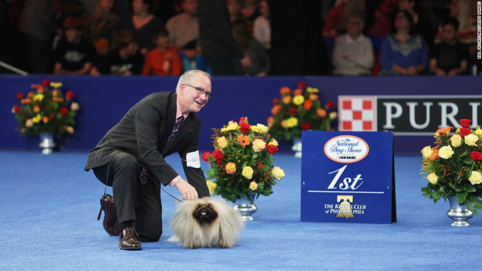 A Pekingese named Rodger took the prize for the toy group.