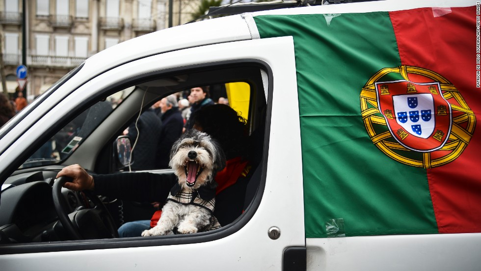 The Portuguese capital scored second in the poll overall -- and travelers with a pooch won't find any city more welcoming.