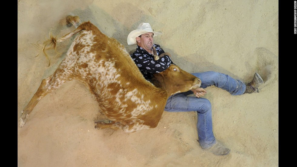 Terry Evison of Nilma competes in steer wrestling during the National Rodeo Finals on June 16 in Gold Coast, Australia.