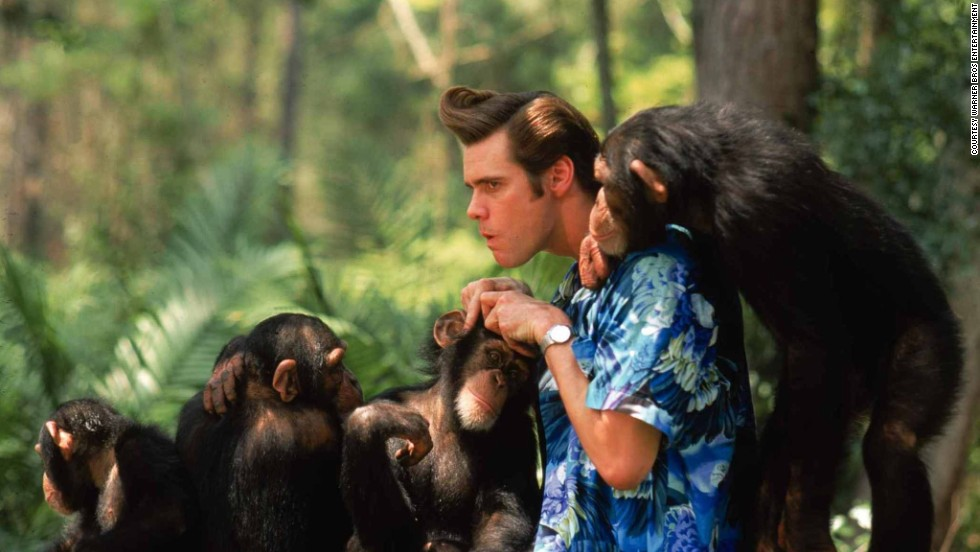 "The days of the slapstick hero aren't over. <strong>Jim Carrey </strong>exploded onto the cinema screen in 1994 making ""Ace Ventura: Pet Detective"" an<em> </em>unexpected success with his hyperactive gooning and scarcely controlled limbs. Similar roles in ""The Mask"" and ""Dumb and Dumber"" made his name as a box-office draw, before returning to Ventura to produce one of the decade's great gross-out scences. In <strong>""Ace Ventura: When Nature Calls""</strong> (1995) Carey is tasked with struggling naked through the<a href=""http://www.imdb.com/video/screenplay/vi162857241/"" target=""_blank""> <strong>back end of a fake rhinoceros</strong></a> while being watched by a young family."