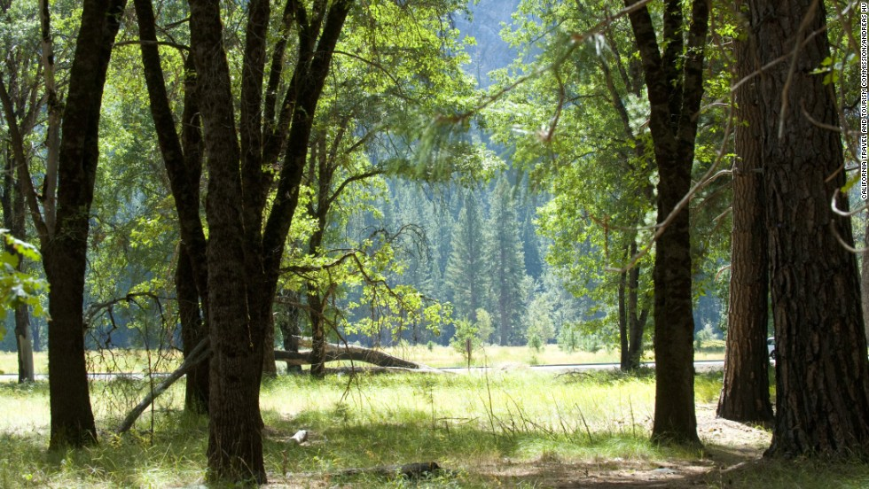Yosemite will be celebrating its 150th birthday next year. The park was originally protected by President Abraham Lincoln's signing of the Yosemite Grant in 1864, giving the Yosemite Valley and the Mariposa Grove to California to be administered. It became a national park in 1890.