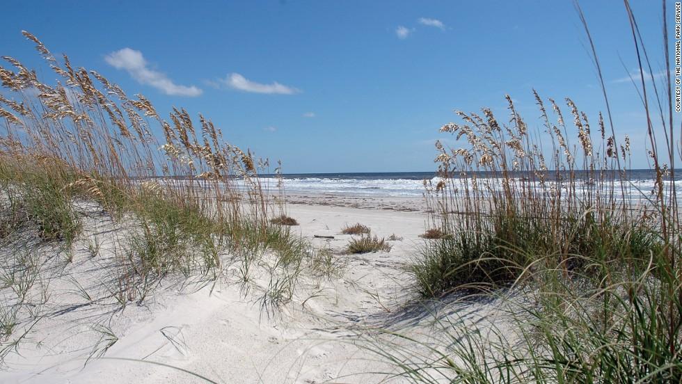 Cumberland Island is a magical Southern getaway and national seashore.